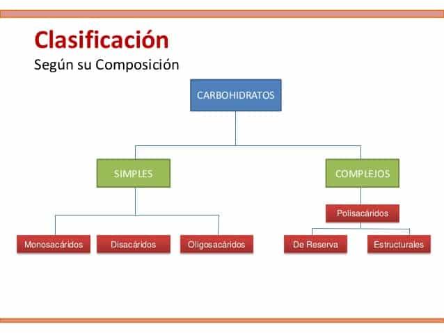 Clasificacion de los carbohidratos segun su composicion
