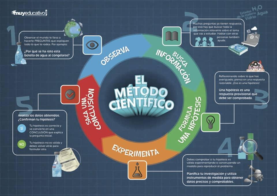 Pasos del método científico infografía